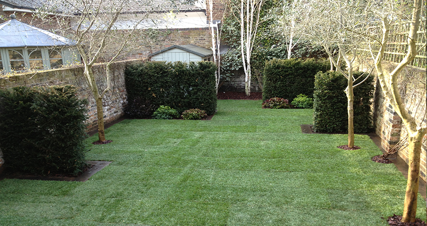 Completed Formal Townhouse garden lush green lawn Holland Park, London