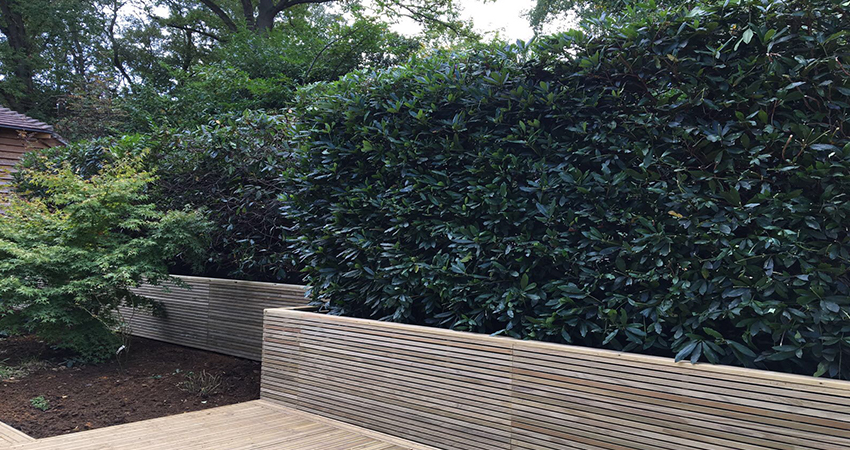 Contemporary slatted panelled fencing. Ightham, Kent