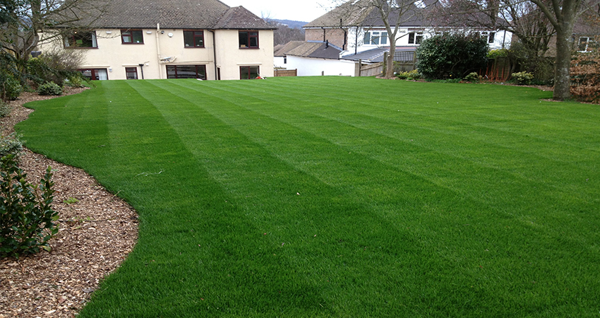 Freshley laid lawn to residential home in Sevenoaks, Kent