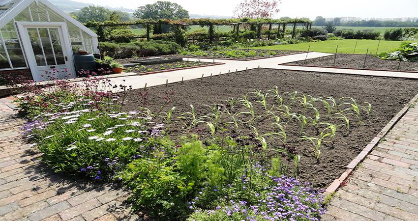 Kitchen garden with brick pathways structuring the vegetable beds. Plaxtol, Kent