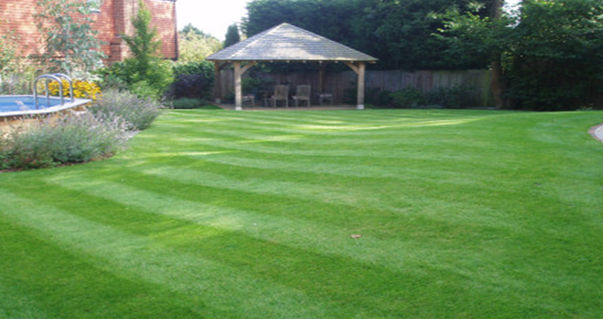 Lush green rolling lawn in landscaped back garden of a Plaxtol property, Kent