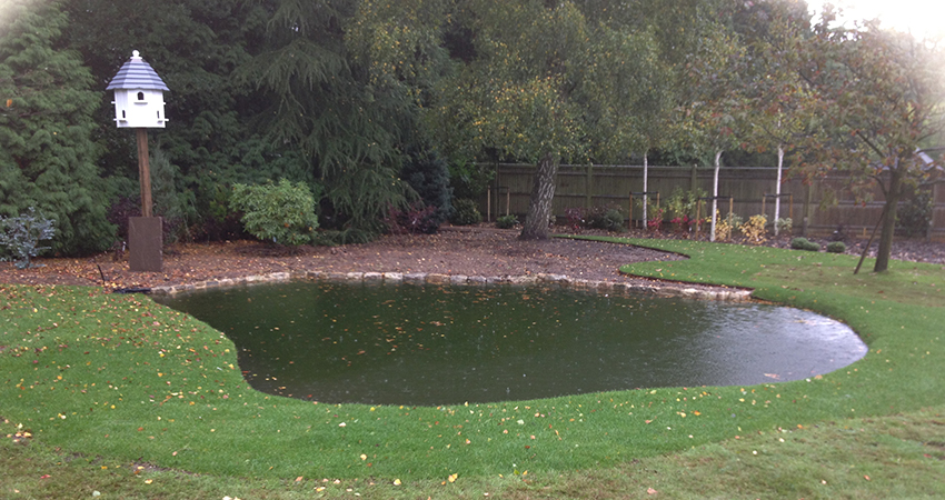 Natural pond with grass edge and bog border. Bitchet Green, Kent