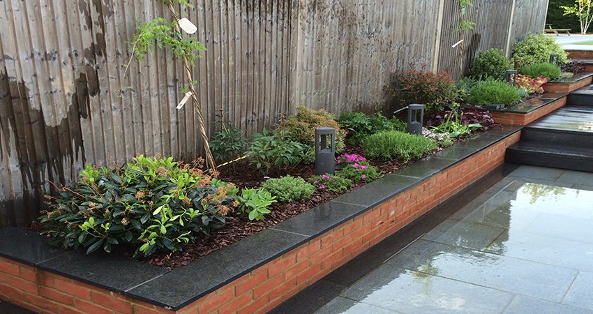 Planting of raised terraced borders. Bickley, Kent
