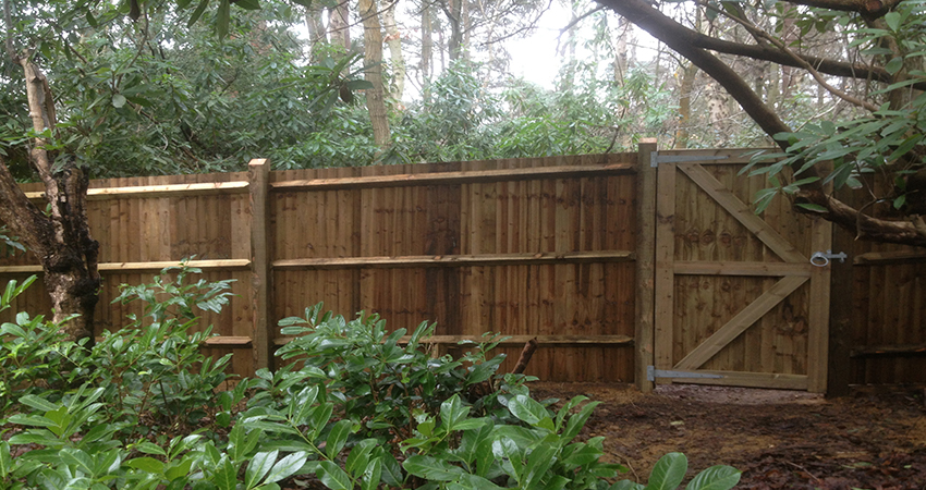 Rear view of a 6 foot high Close board fence with framed ledge and brace gate. Ightham, Kent