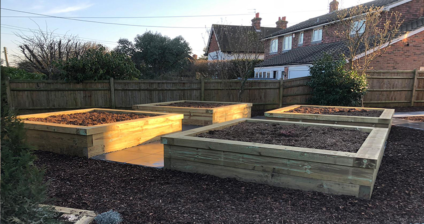 Timber raised vegetable beds with capped edge filled with Organic peat free compost and top soil blend. Ightham, Kent